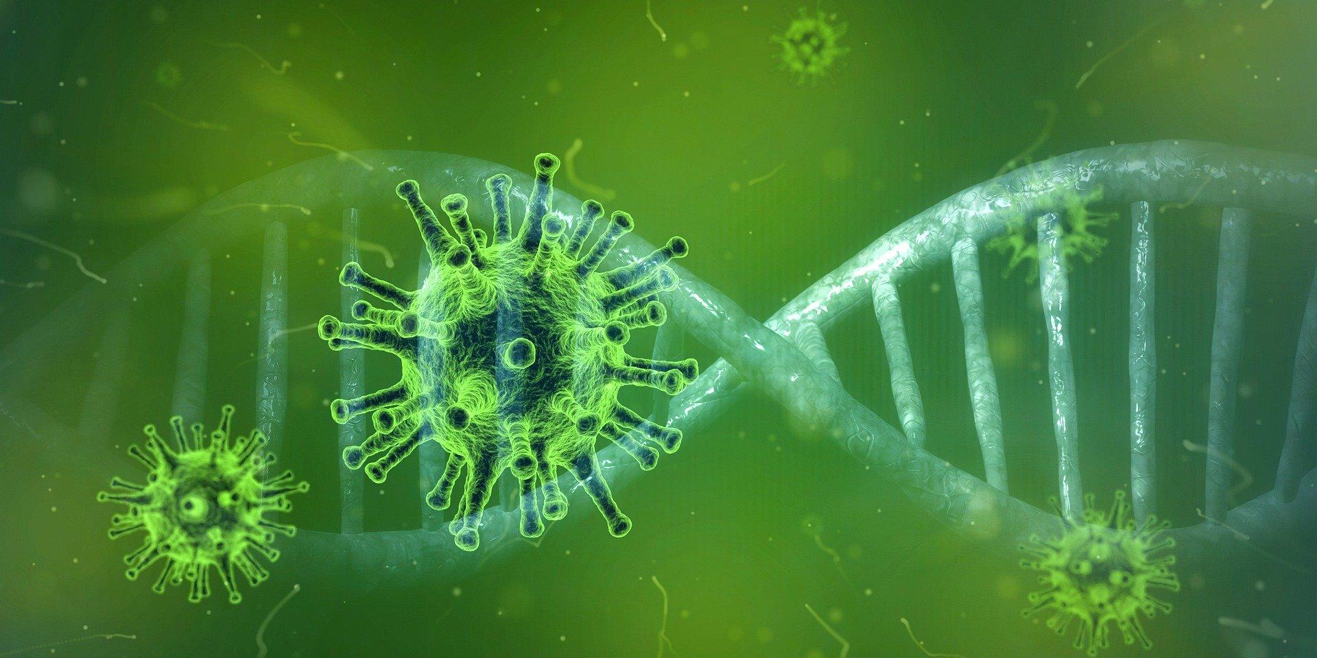 CoronaVirus the Latest during Corona Virus